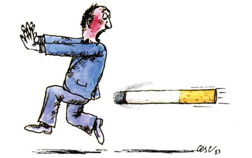 Imágenes - Info Tabac nº 20 - Octubre 2010